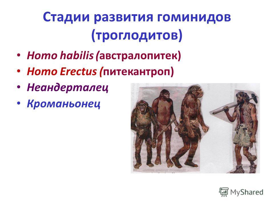 Стадии развития гоминидов (троглодитов) Homo habilis (австралопитек) Homo Erectus (питекантроп) Неандерталец Кроманьонец