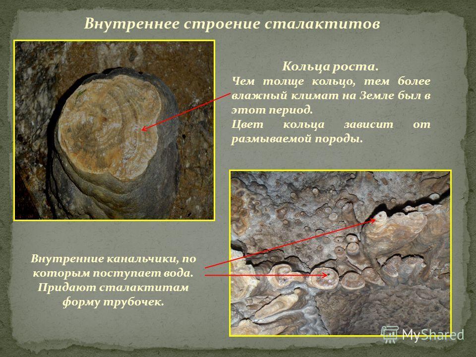 Внутреннее строение сталактитов Внутренние канальчики, по которым поступает вода. Придают сталактитам форму трубочек. Кольца роста. Чем толще кольцо, тем более влажный климат на Земле был в этот период. Цвет кольца зависит от размываемой породы.