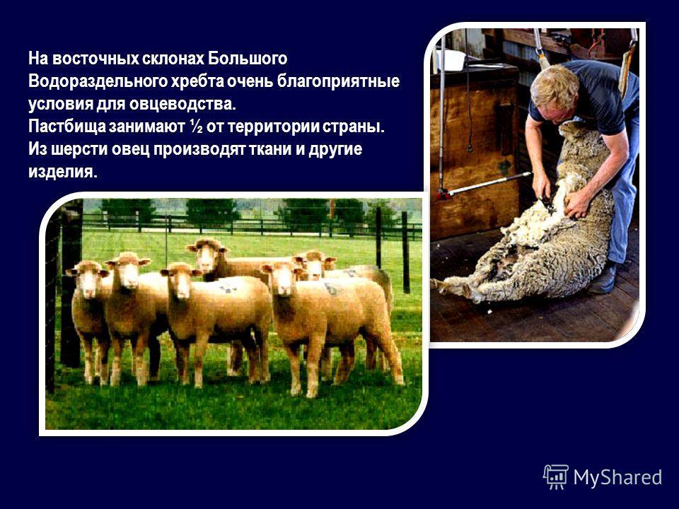 На восточных склонах Большого Водораздельного хребта очень благоприятные условия для овцеводства. Пастбища занимают ½ от территории страны. Из шерсти овец производят ткани и другие изделия.