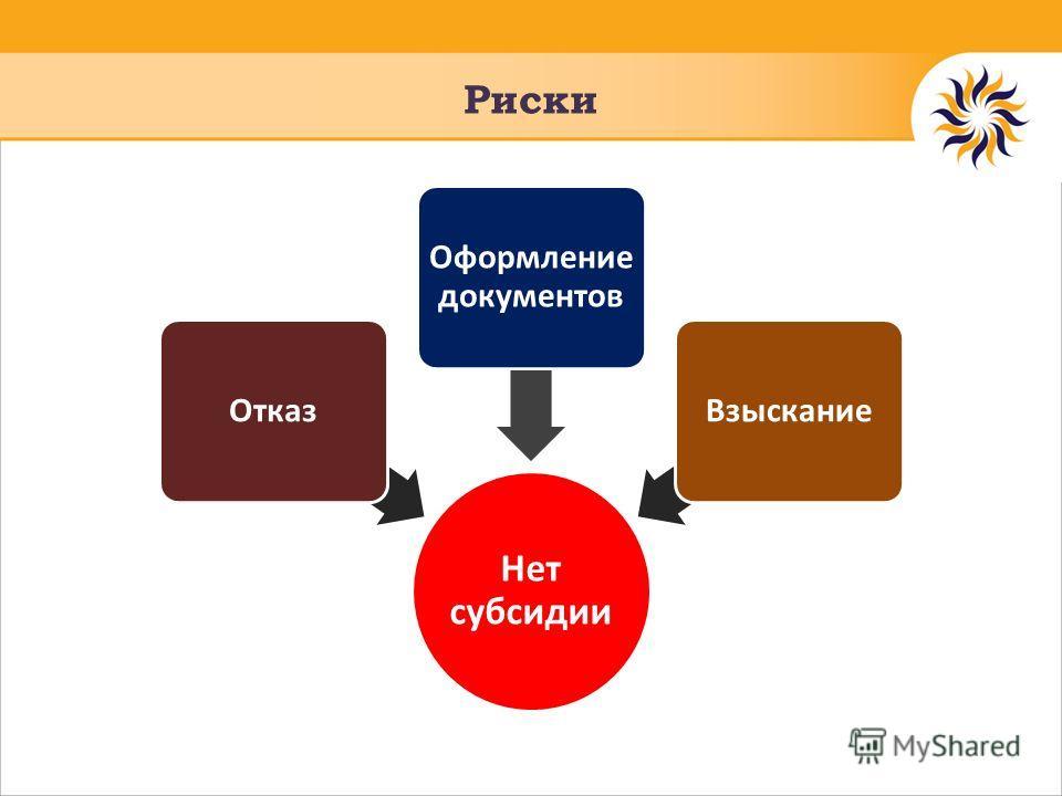 Риски Нет субсидии Отказ Оформление документов Взыскание