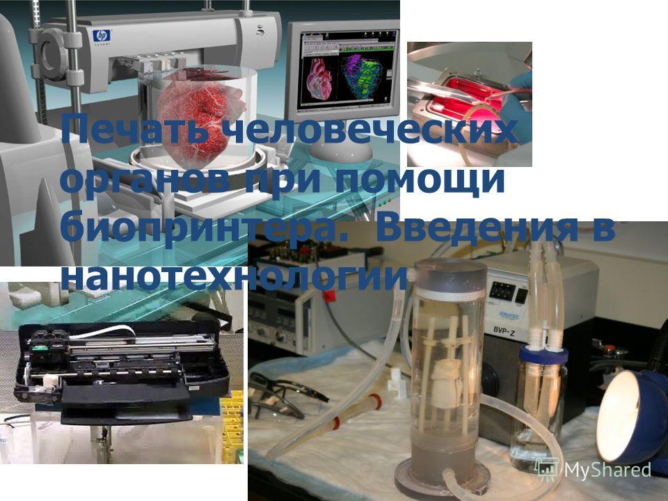 Печать человеческих органов при помощи био принтера. Введения в нанотехнологиии