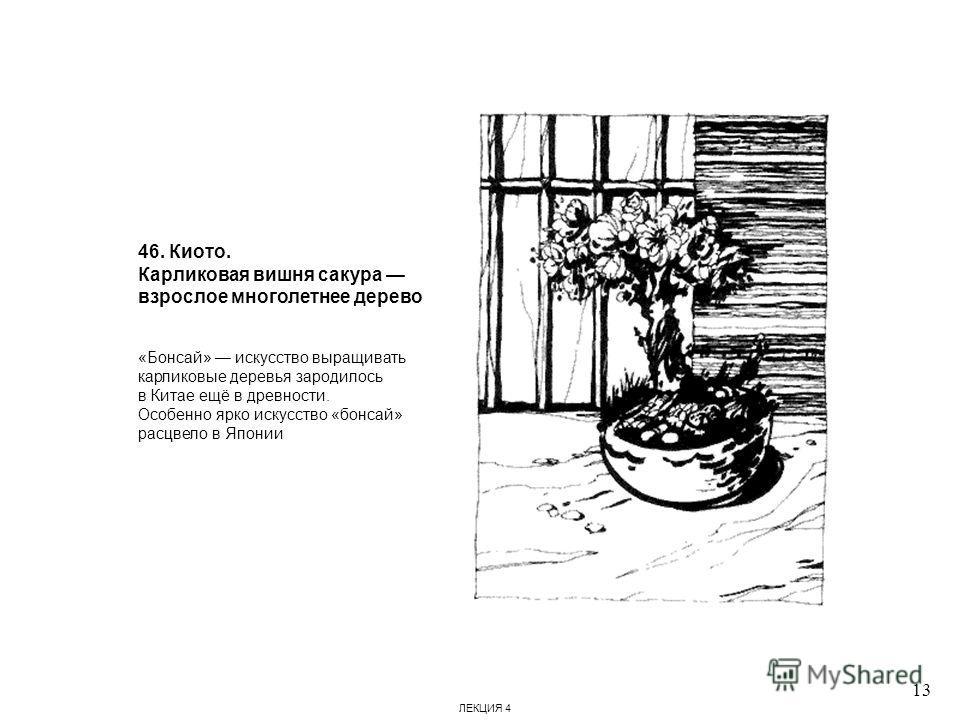 46. Киото. Карликовая вишня сакура взрослое многолетнее дерево «Бонсай» искусство выращивать карликовые деревья зародилось в Китае ещё в древности. Особенно ярко искусство «бонсай» расцвело в Японии 13 ЛЕКЦИЯ 4
