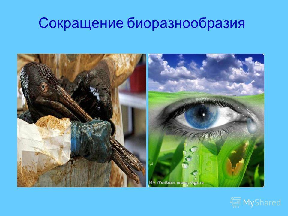 Сокращение биоразнообразия