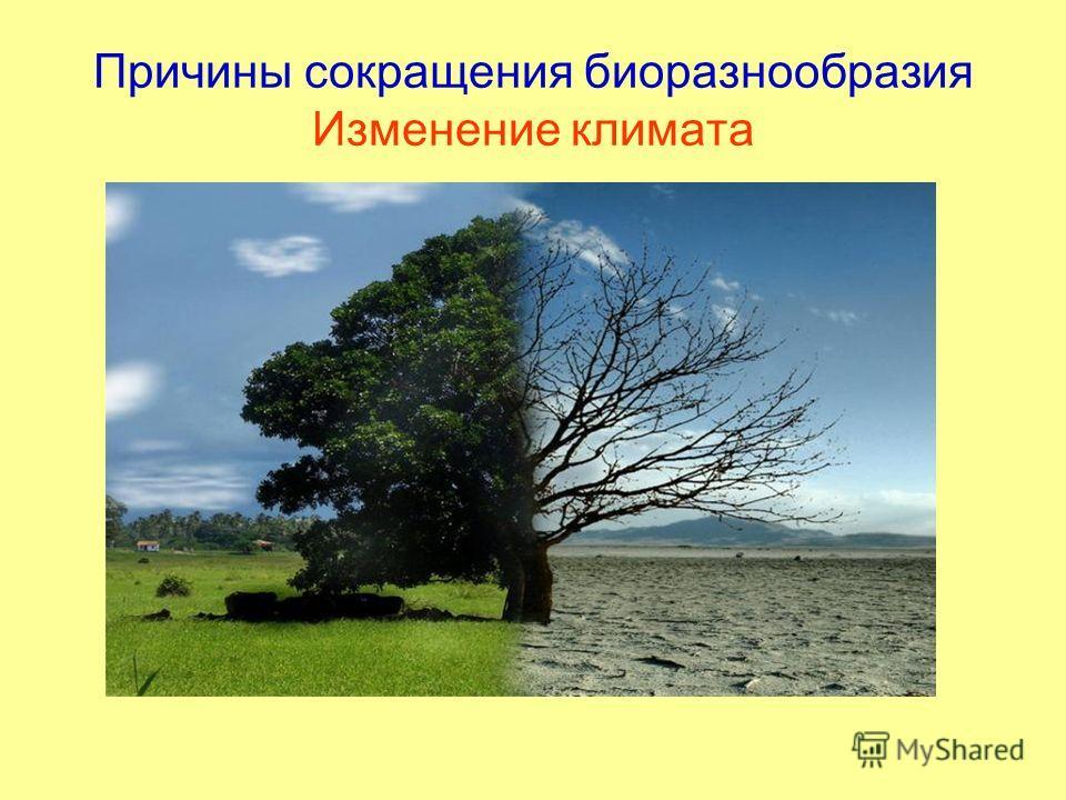 Причины сокращения биоразнообразия Изменение климата