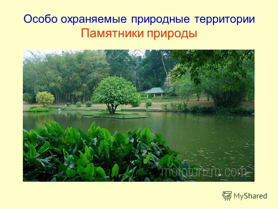 Особо охраняемые природные территории Памятники природы
