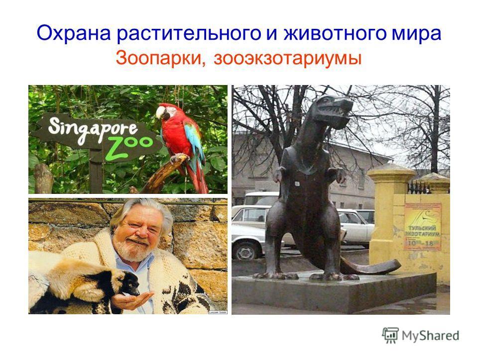 Охрана растительного и животного мира Зоопарки, зооэкзотариумы