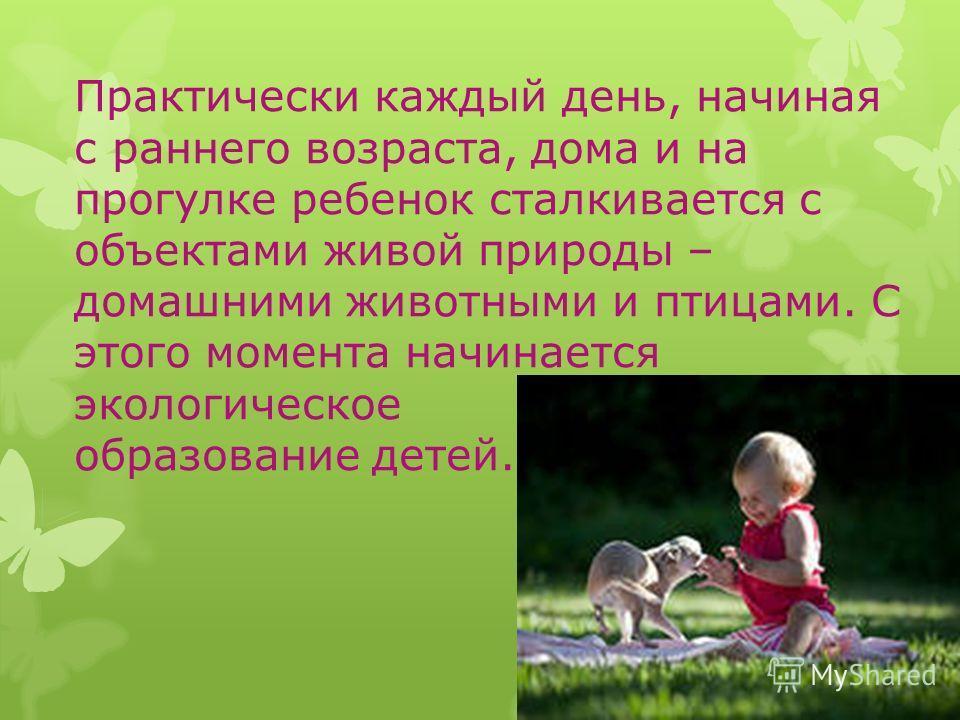 Практически каждый день, начиная с раннего возраста, дома и на прогулке ребенок сталкивается с объектами живой природы – домашними животными и птицами. С этого момента начинается экологическое образование детей.