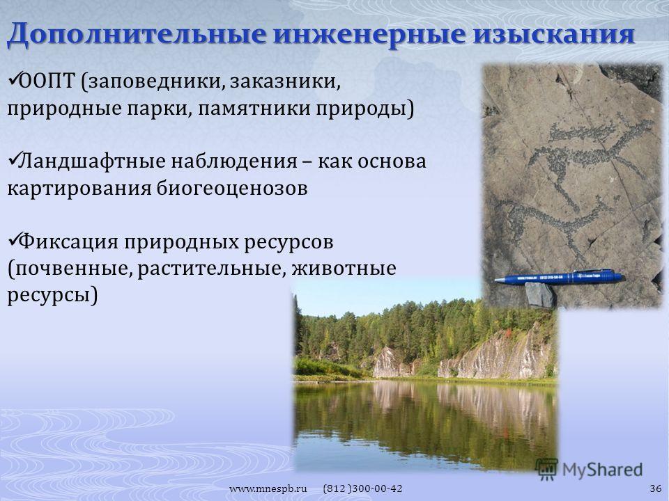 Дополнительные инженерные изыскания www.mnespb.ru (812 )300-00-42 ООПТ (заповедники, заказники, природные парки, памятники природы) Ландшафтные наблюдения – как основа картирования биогеоценозов Фиксация природных ресурсов (почвенные, растительные, ж