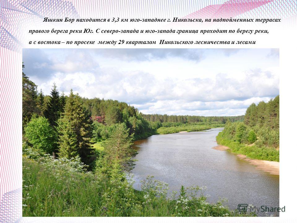 Яшкин Бор находится в 3,3 км юго-западнее г. Никольска, на надпойменных террасах правого берега реки Юг. С северо-запада и юго-запада граница проходит по берегу реки, а с востока – по просеке между 29 кварталом Никольского лесничества и лесами Николь