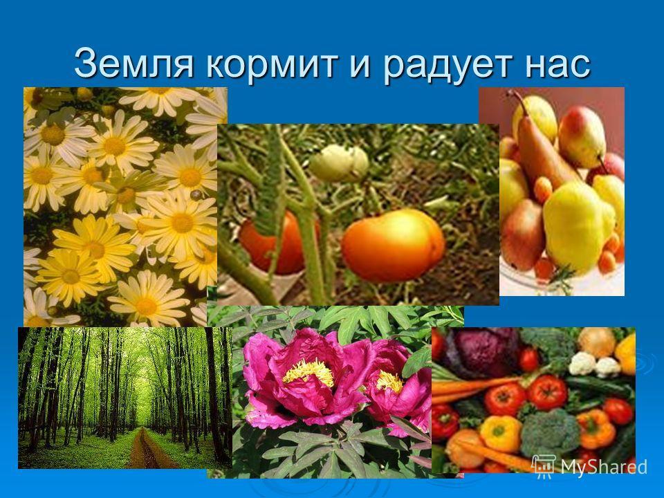 Земля кормит и радует нас