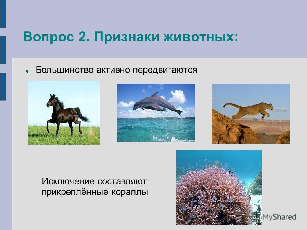 Вопрос 2. Признаки животных: Большинство активно передвигаются Исключение составляют прикреплённые кораллы