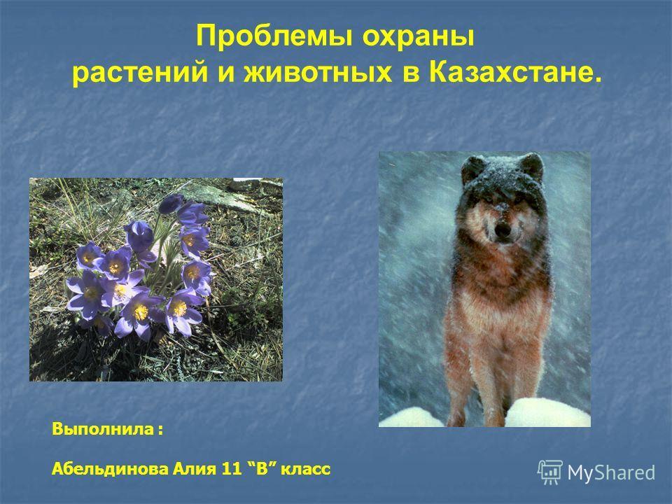 Проблемы охраны растений и животных в Казахстане. Выполнила : Абельдинова Алия 11 В класс