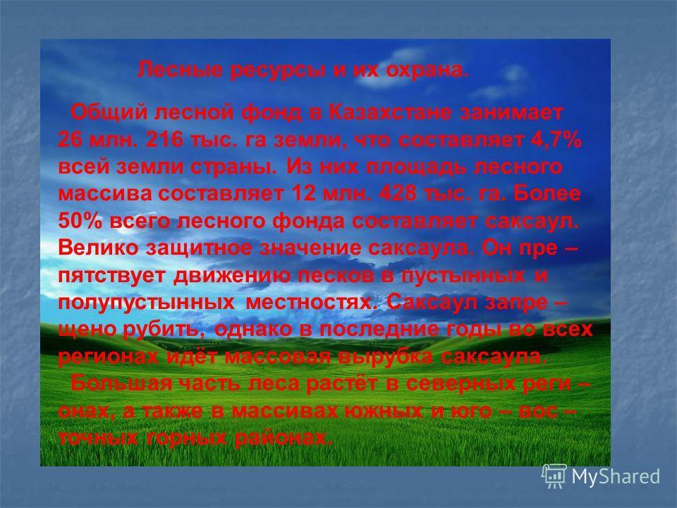 Лесные ресурсы и их охрана. Общий лесной фонд в Казахстане занимает 26 млн. 216 тыс. га земли, что составляет 4,7% всей земли страны. Из них площадь лесного массива составляет 12 млн. 428 тыс. га. Более 50% всего лесного фонда составляет саксаул. Вел