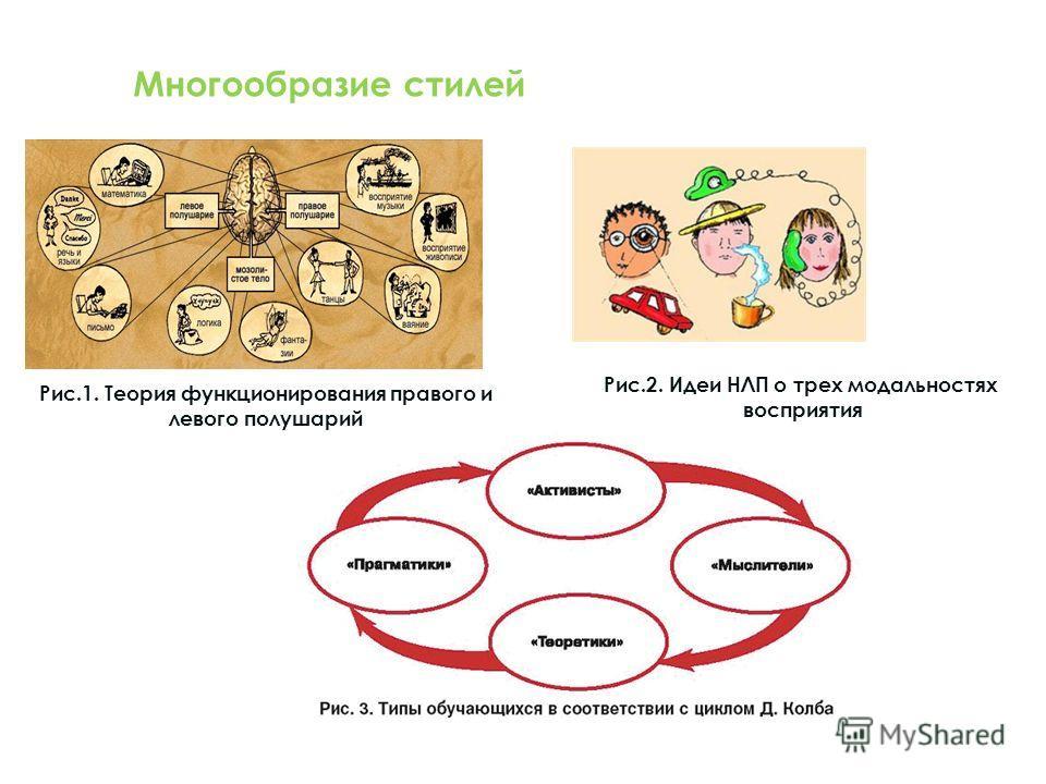 Рис.1. Теория функционирования правого и левого полушарий Рис.2. Идеи НЛП о трех модальностях восприятия Многообразие стилей