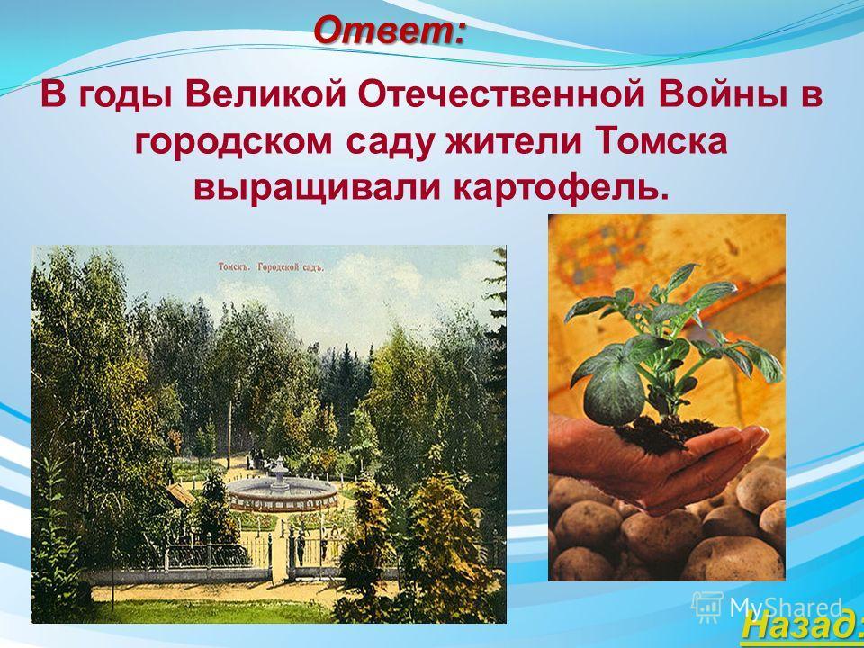 Ответ: Что выращивали жители Томска в городском саду в годы Великой Отечественной Войны?