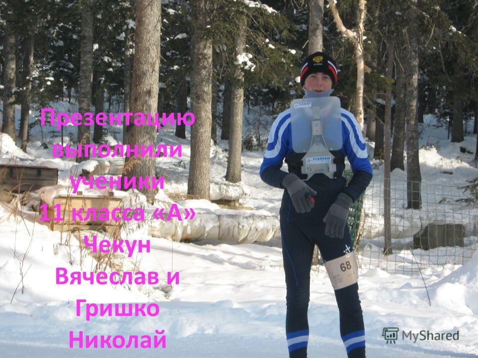 Презентацию выполнили ученики 11 класса «А» Чекун Вячеслав и Гришко Николай