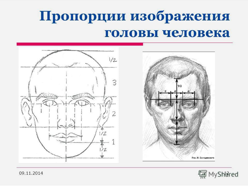 Пропорции изображения головы человека 09.11.201412