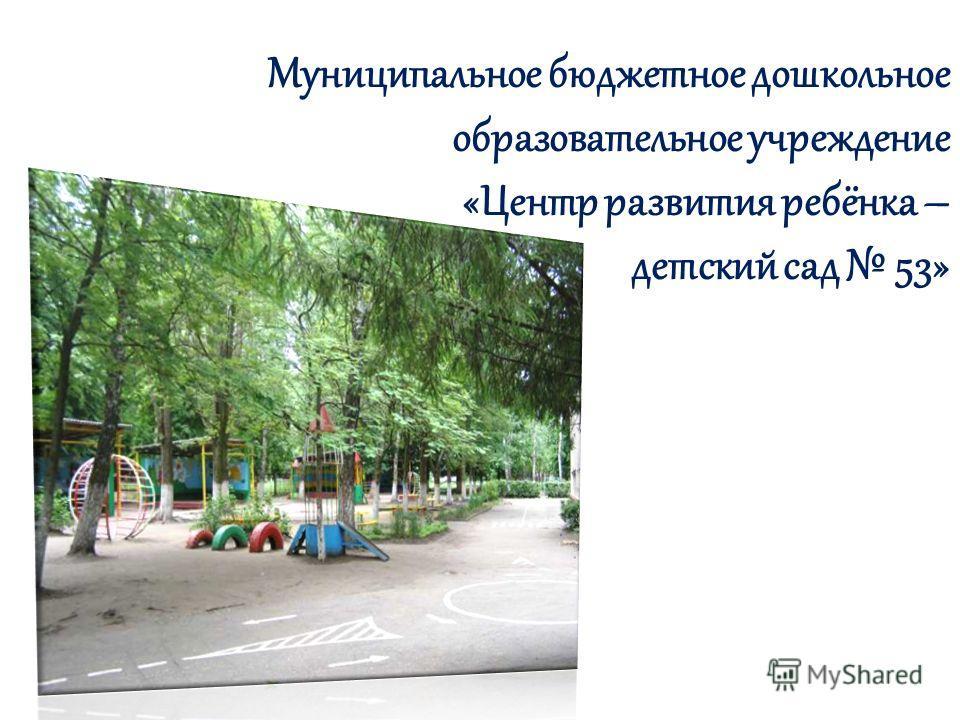 Муниципальное бюджетное дошкольное образовательное учреждение «Центр развития ребёнка – детский сад 53»