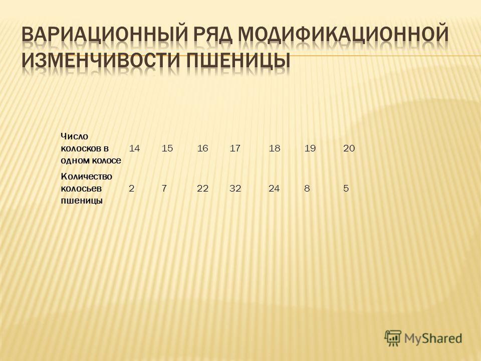 Число колосков в одном колосе 14151617181920 Количество колосьев пшеницы 2 722322485