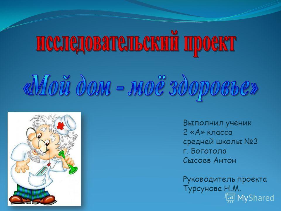 Выполнил ученик 2 «А» класса средней школы 3 г. Боготола Сысоев Антон Руководитель проекта Турсунова Н.М.