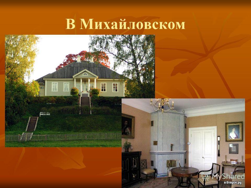 В Михайловском