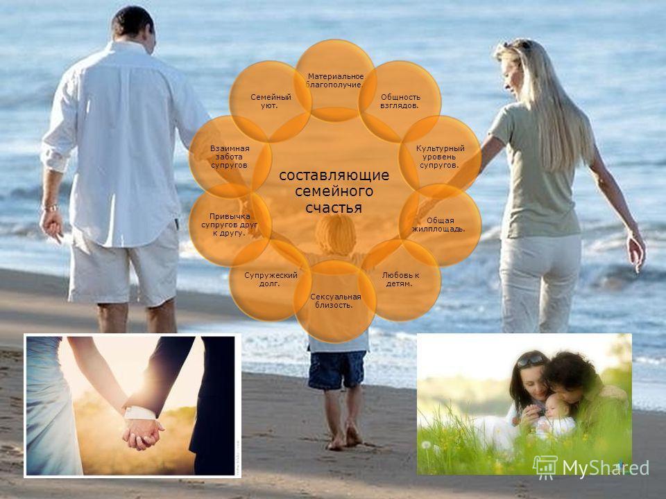 составляющие семейного счастья Материальное благополучие. Общность взглядов. Культурный уровень супругов. Общая жилплощадь. Любовь к детям. Сексуальная близость. Супружеский долг. Привычка супругов друг к другу. Взаимная забота супругов Семейный уют.