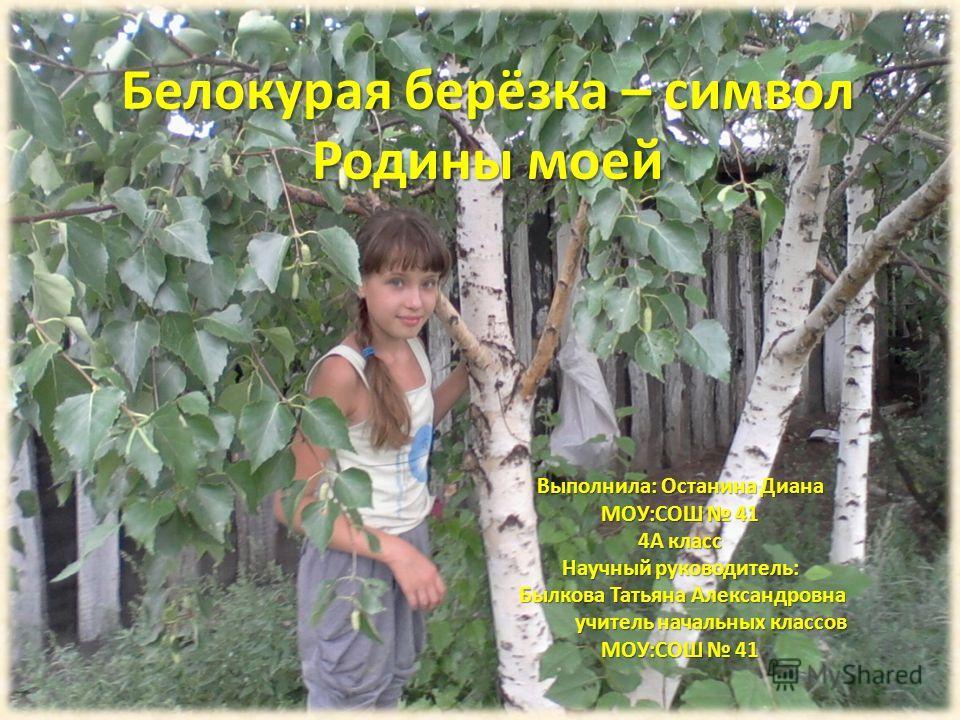 Белокурая берёзка – символ Родины моей