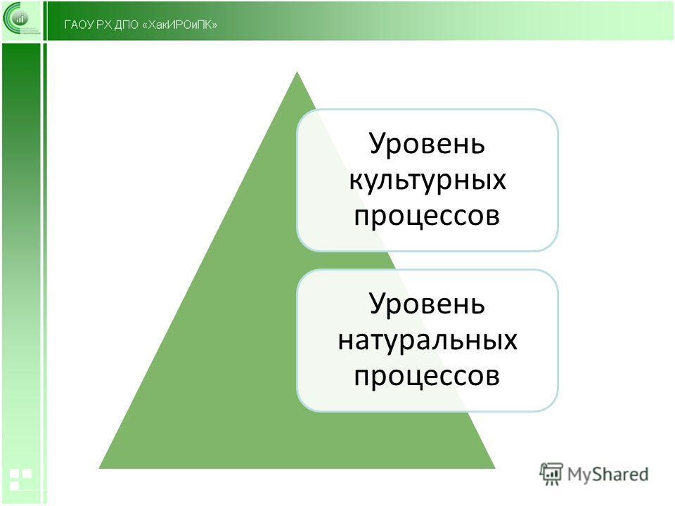 Уровень культурных процессов Уровень натуральных процессов
