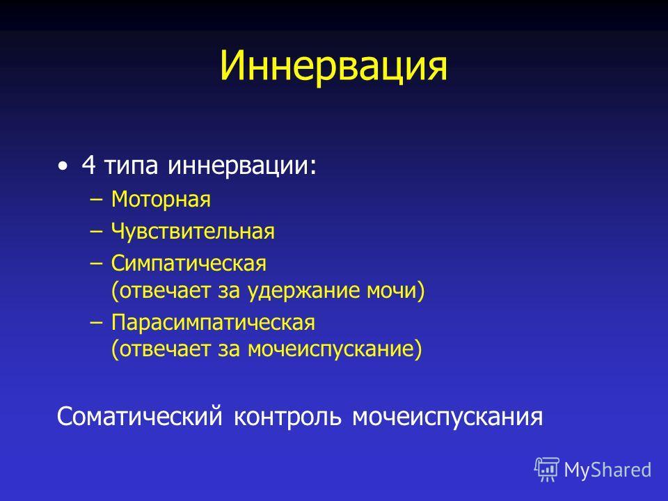 Иннервация 4 типа иннервации: –Моторная –Чувствительная –Симпатическая (отвечает за удержание мочи) –Парасимпатическая (отвечает за мочеиспускание) Соматический контроль мочеиспускания