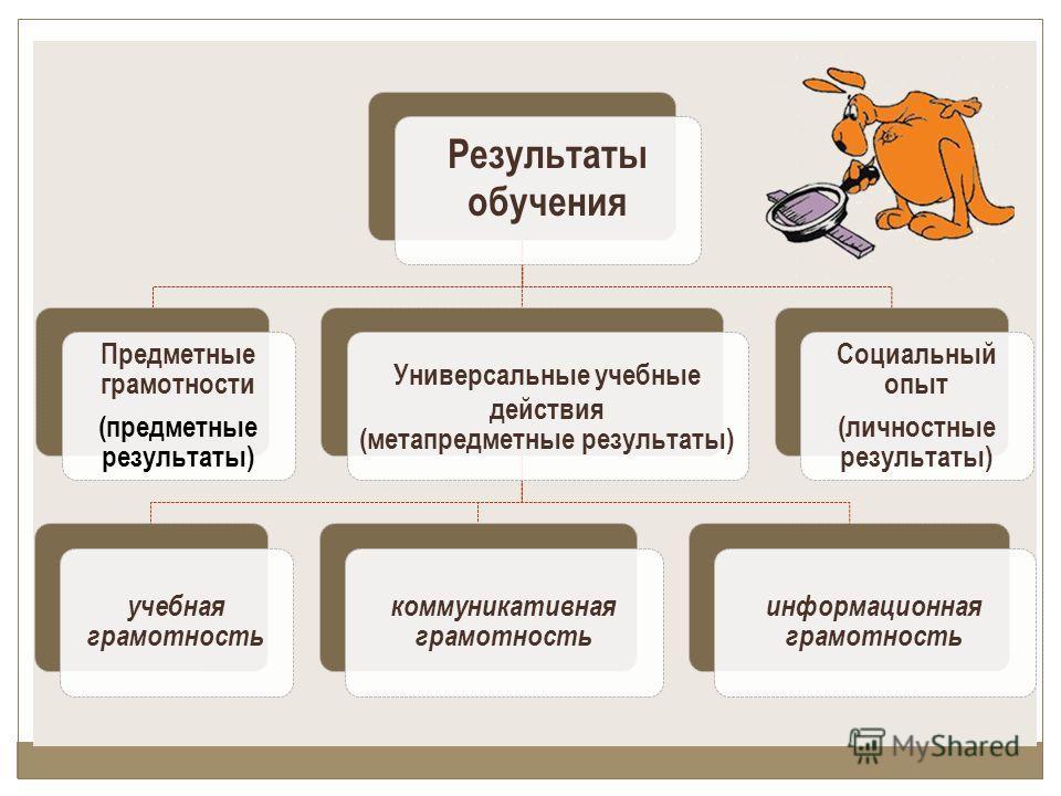 Результаты обучения Предметные грамотности (предметные результаты) Универсальные учебные действия (метапредметные результаты) учебная грамотность коммуникативная грамотность информационная грамотность Социальный опыт (личностные результаты)