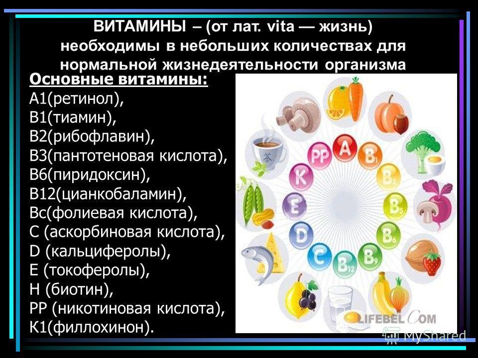 Основные витамины: А1(ретинол), В1(тиамин), В2(рибофлавин), В3(пантотеновая кислота), В6(пиридоксин), В12(цианкобаламин), Вс(фолиевая кислота), С (аскорбиновая кислота), D (кальциферолы), Е (токоферолы), Н (биотин), РР (никотиновая кислота), К1(филло
