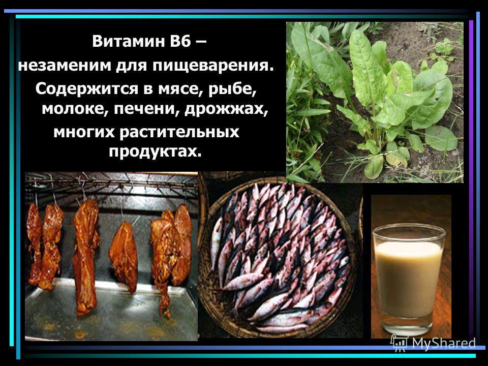 Витамин В6 – незаменим для пищеварения. Содержится в мясе, рыбе, молоке, печени, дрожжах, многих растительных продуктах.
