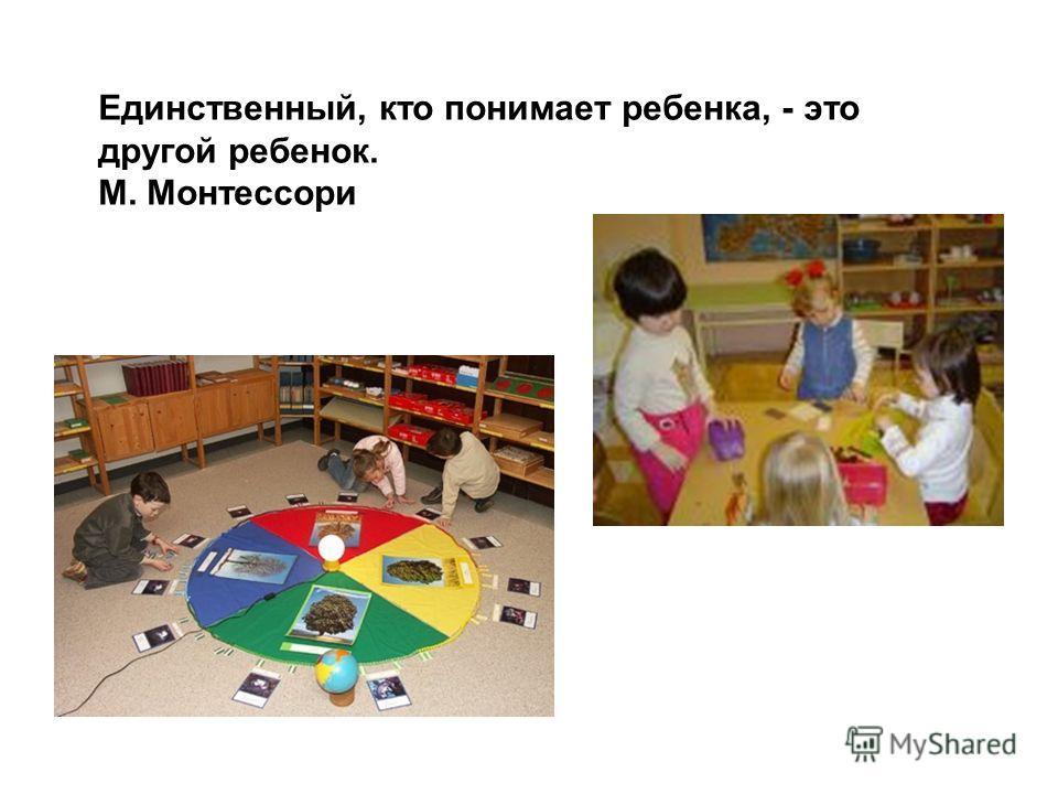 Единственный, кто понимает ребенка, - это другой ребенок. М. Монтессори