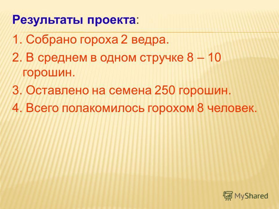 Результаты проекта: 1. Собрано гороха 2 ведра. 2. В среднем в одном стручке 8 – 10 горошин. 3. Оставлено на семена 250 горошин. 4. Всего полакомилось горохом 8 человек.
