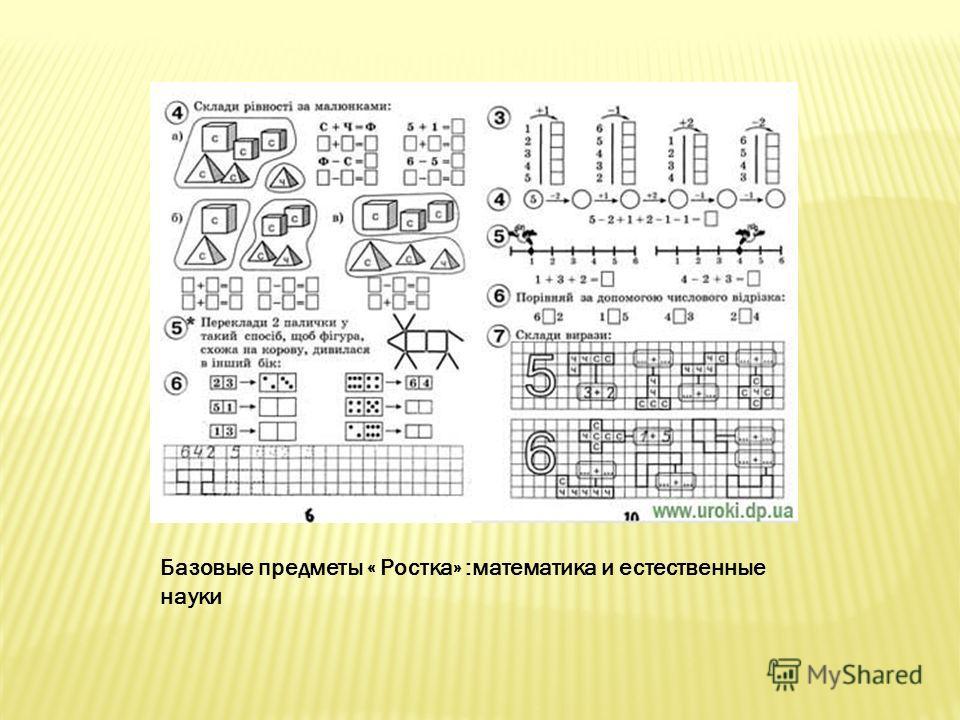Базовые предметы « Ростка» :математика и естественные науки