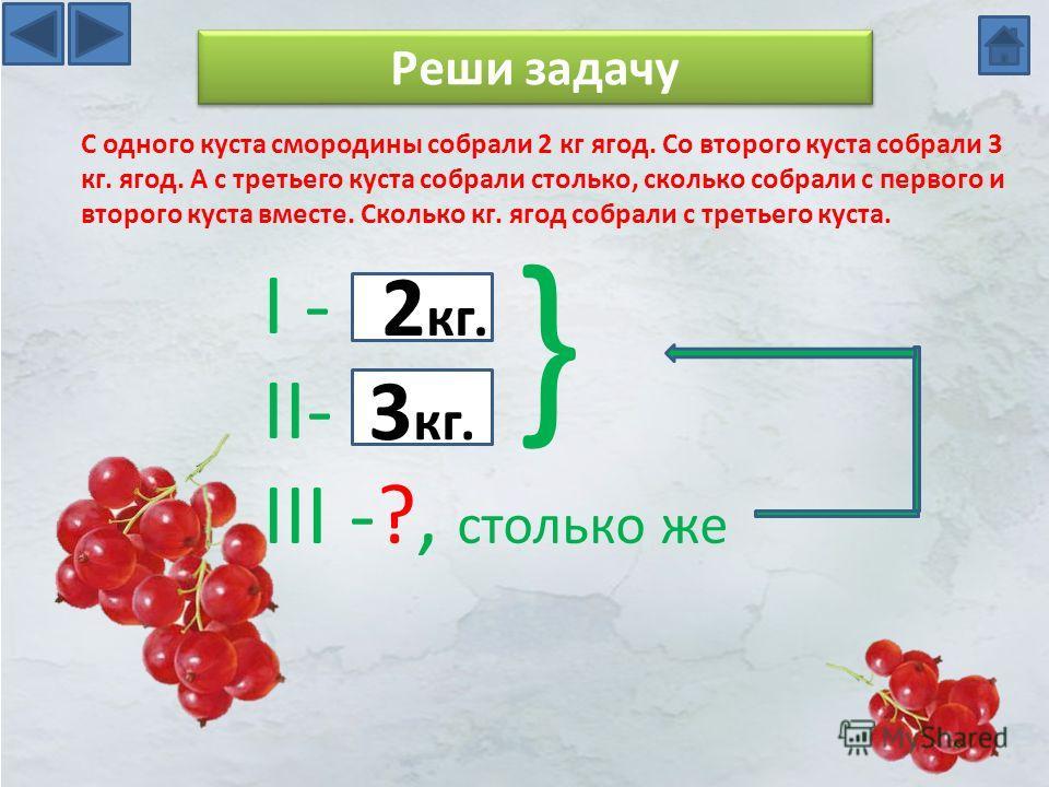 Реши задачу С одного куста смородины собрали 2 кг ягод. Со второго куста собрали 3 кг. ягод. А с третьего куста собрали столько, сколько собрали с первого и второго куста вместе. Сколько кг. ягод собрали с третьего куста. I - II- III -?, столько же }