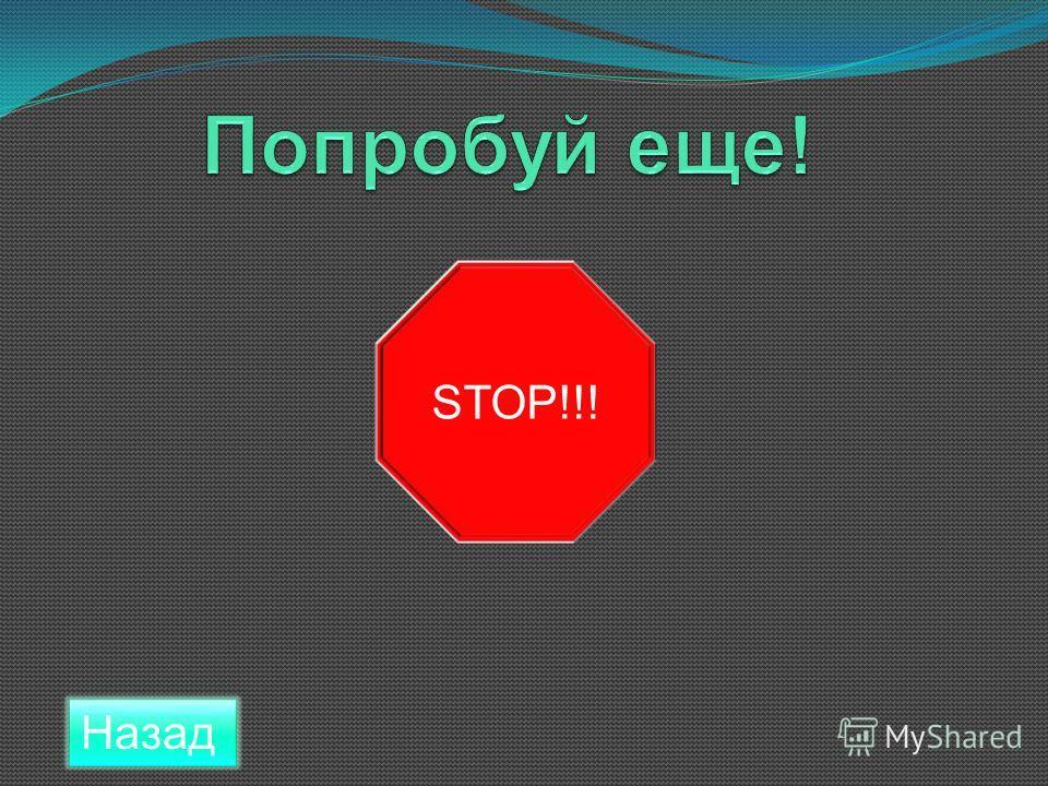 Назад STOP!!!
