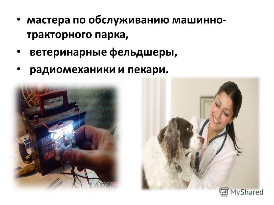 мастера по обслуживанию машинно- тракторного парка, ветеринарные фельдшеры, радиомеханики и пекари.