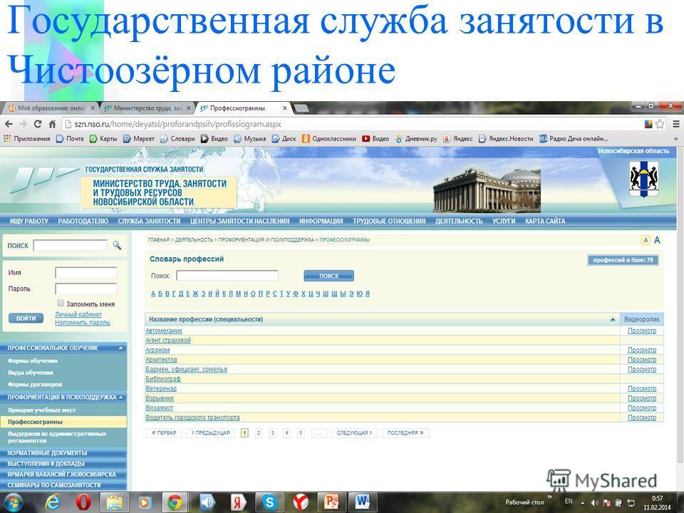 Государственная служба занятости в Чистоозёрном районе