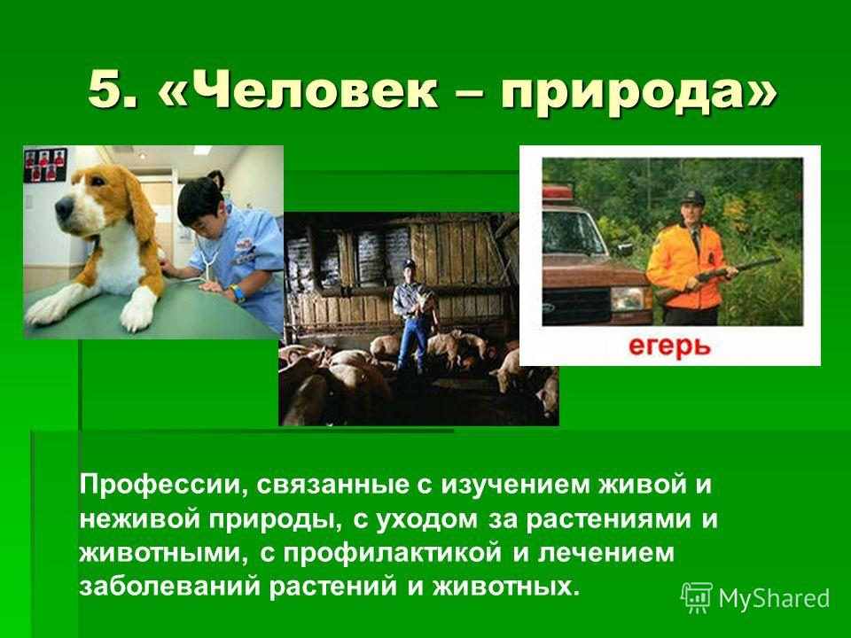 Все профессии связанные с животными
