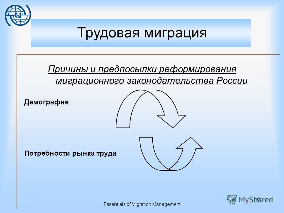 Essentials of Migration Management 5 ВЛИЯНИЕ ГОСУДАРСТВЕННОЙ ПОЛИТИКИ НА РЕГУЛИРОВАНИЕ ТРУДОВОЙ МИГРАЦИИ Административно- правовое регулирование трудовой миграции ВОПРОСЫ НАЦИОНАЛЬНОЙ БЕЗОПАСНОСТИ РЕГЛАМЕНТАЦИЯ ТРУДОВЫХ ОТНОШЕНИЙ ДЕМОГРАФИЧЕСКАЯ СИТУ