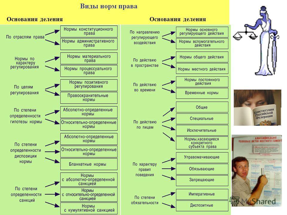 Виды норм права Основания деления Основания деления