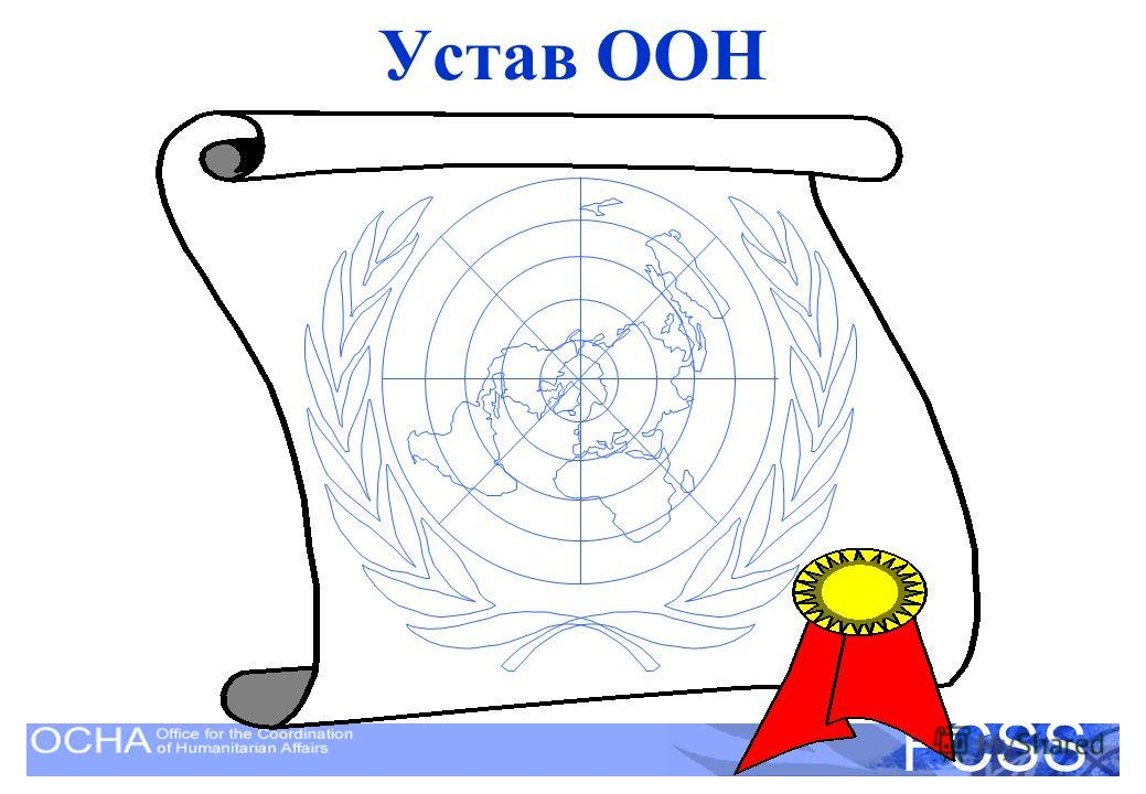United Nations Disaster Assessment and Coordination FCSS Устав ООН