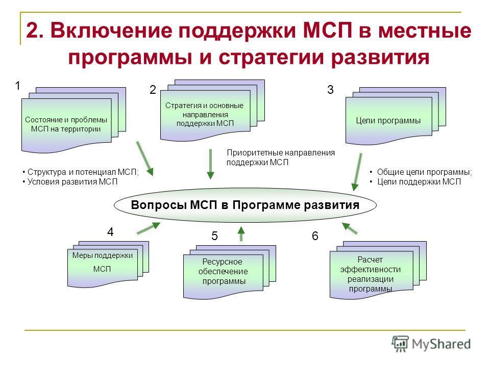 Вопросы МСП в Программе развития Состояние и проблемы МСП на территории Стратегия и основные направления поддержки МСП Цели программы Меры поддержки МСП Структура и потенциал МСП; Условия развития МСП Общие цели программы; Цели поддержки МСП Ресурсно