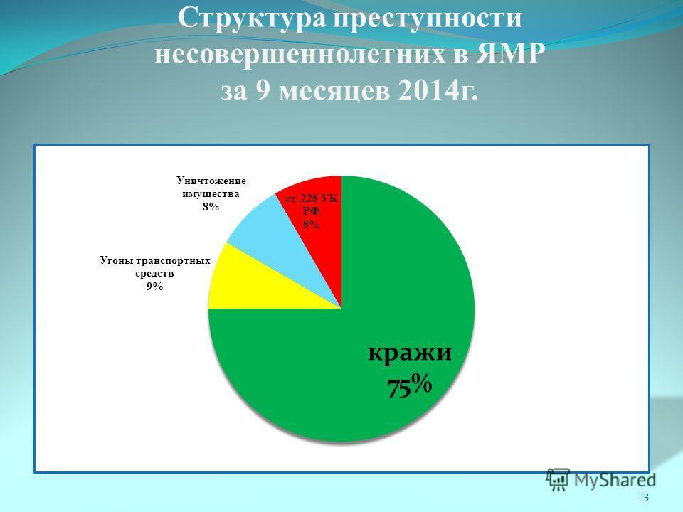 Структура преступности несовершеннолетних в ЯМР за 9 месяцев 2014 г. 13