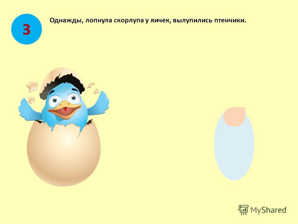 Однажды, лопнула скорлупа у яичек, вылупились птенчики. 3
