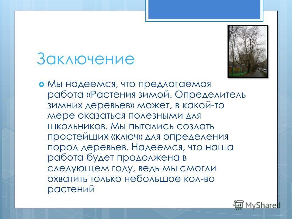 Заключение Мы надеемся, что предлагаемая работа «Растения зимой. Определитель зимних деревьев» может, в какой-то мере оказаться полезными для школьников. Мы пытались создать простейших «ключ» для определения пород деревьев. Надеемся, что наша работа