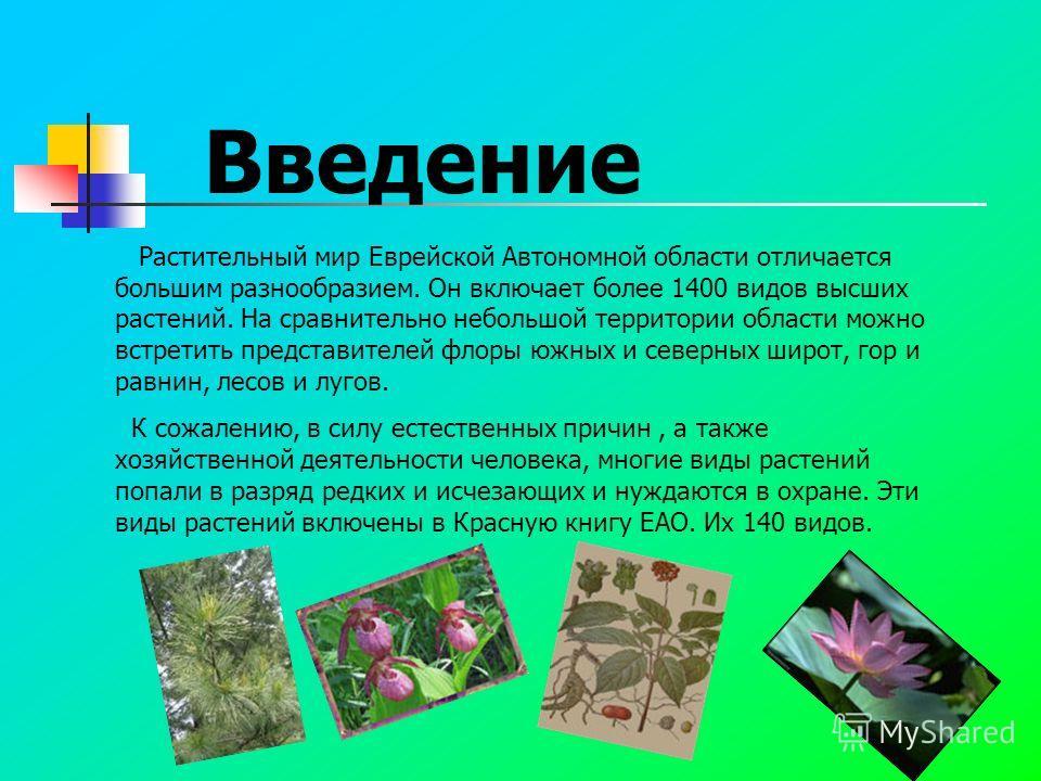 Введение Растительный мир Еврейской Автономной области отличается большим разнообразием. Он включает более 1400 видов высших растений. На сравнительно небольшой территории области можно встретить представителей флоры южных и северных широт, гор и рав