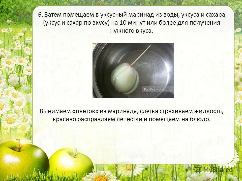 1. Луковицу очищаем, не срезая корневого уплотнения, а лишь хорошо очистив от корешков. 6. Затем помещаем в уксусный маринад из воды, уксуса и сахара (уксус и сахар по вкусу) на 10 минут или более для получения нужного вкуса. Вынимаем «цветок» из мар