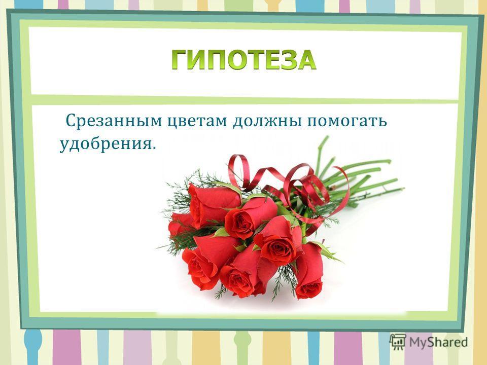 Срезанным цветам должны помогать удобрения.
